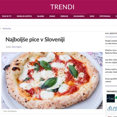Članek siol.net